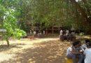 Vidya's Nakshatra Garden : A step towards environment conservation